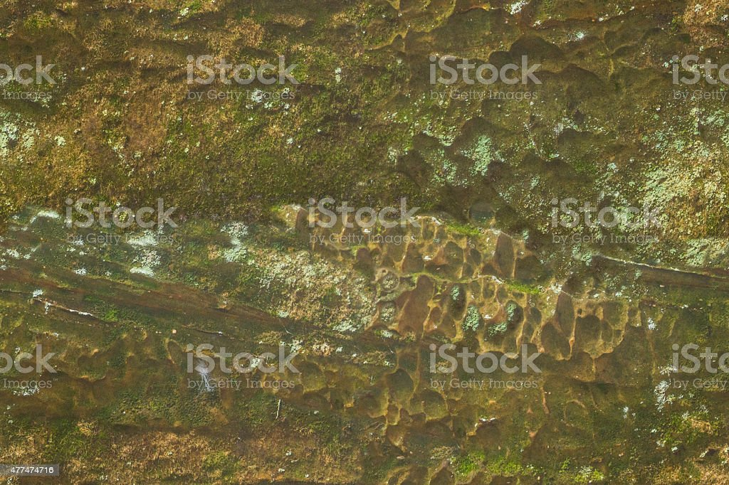 Rock and Lichen Texture stock photo