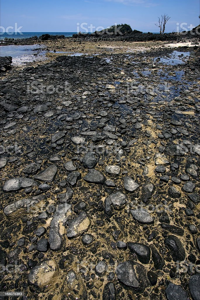 rock and stone in the beach royalty-free stock photo
