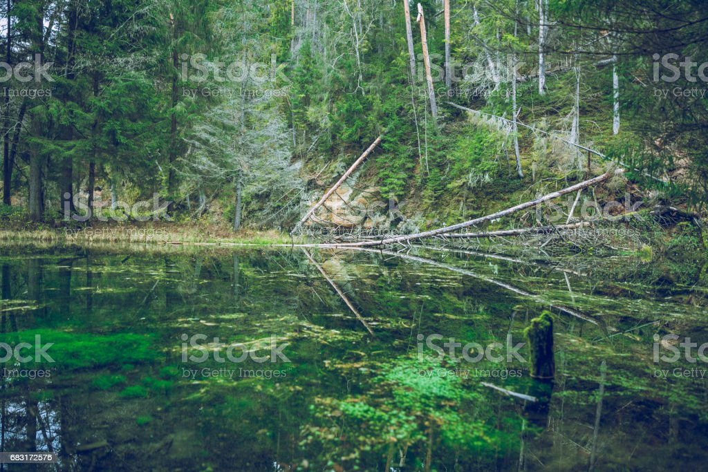 Rock at the river Gauja in Latvia stock photo