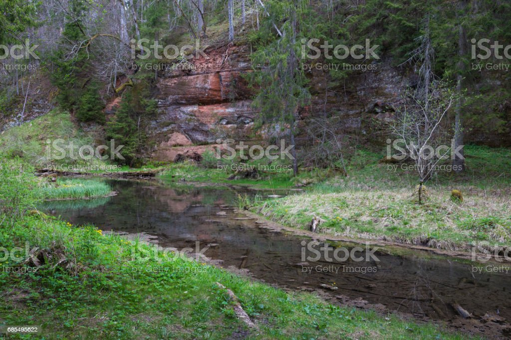 Rock at the river Gauja in Latvia. stock photo