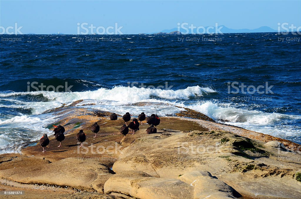 Rock Formation and Blue Ocean Waves stock photo