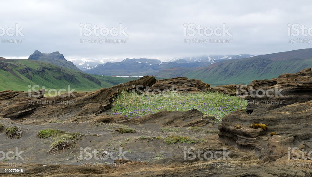 Rock formations at Dyrholaey in Iceland stock photo