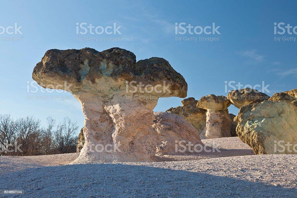 rock formations mushrooms stock photo