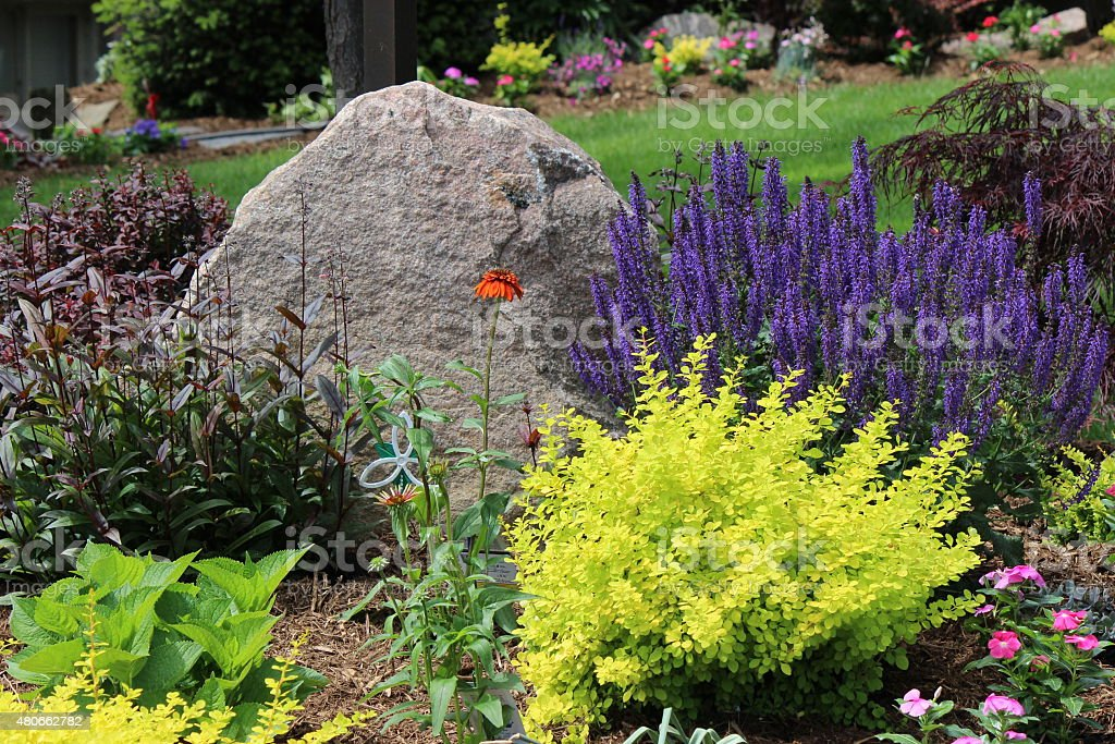 Rock Garden of Various Types of Colourful Blooming Flowers stock photo