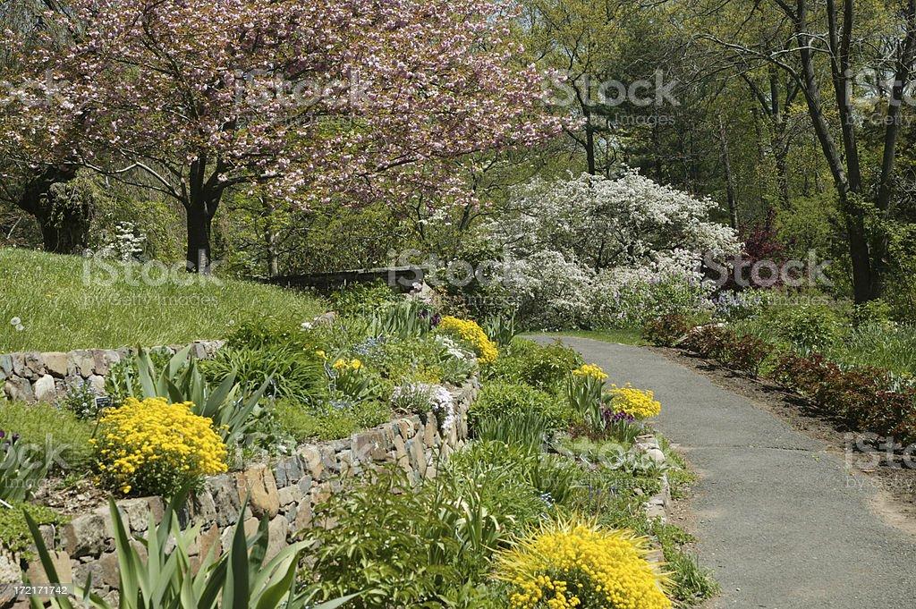 rock garden path royalty-free stock photo
