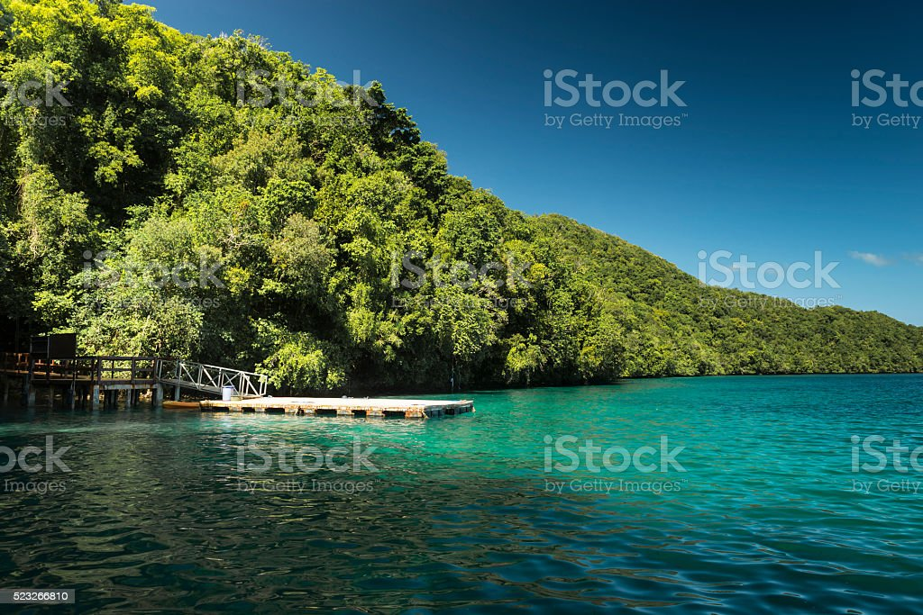 Rock Islands and Jellyfish Lake - Palau, Micronesia stock photo