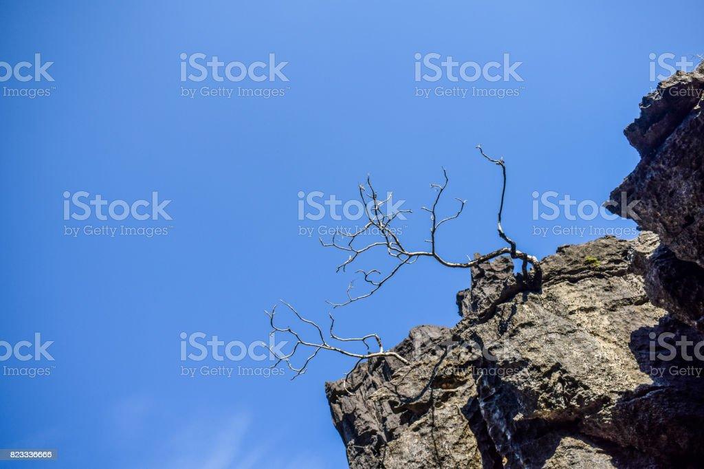 Rock Karst Summit 5 stock photo