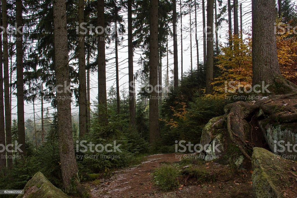 Rock labyrinth Luisenburg (Germany) stock photo