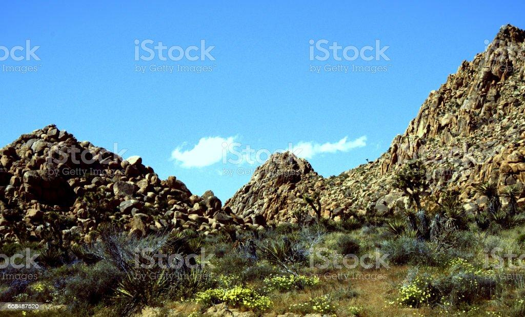 Rock mountain has colorful spring. stock photo