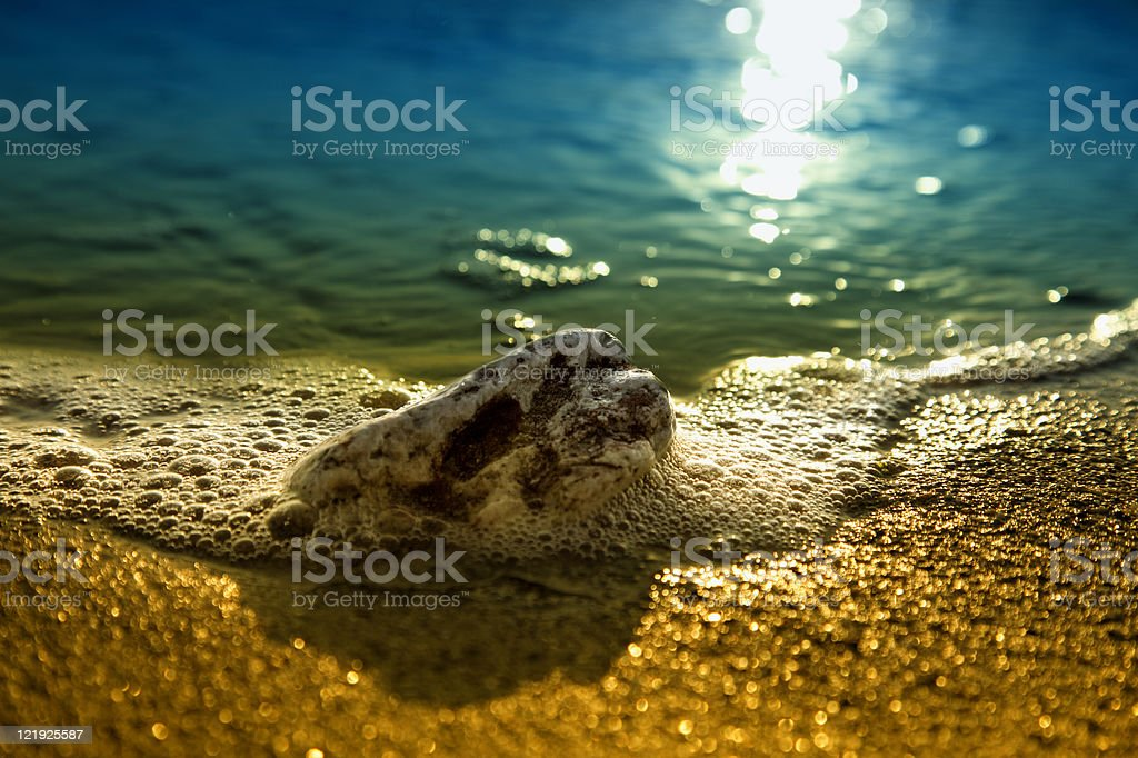 rock on the beach stock photo