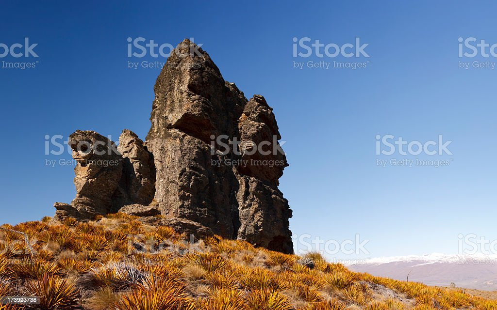 Rock Outcrop - New Zealand stock photo