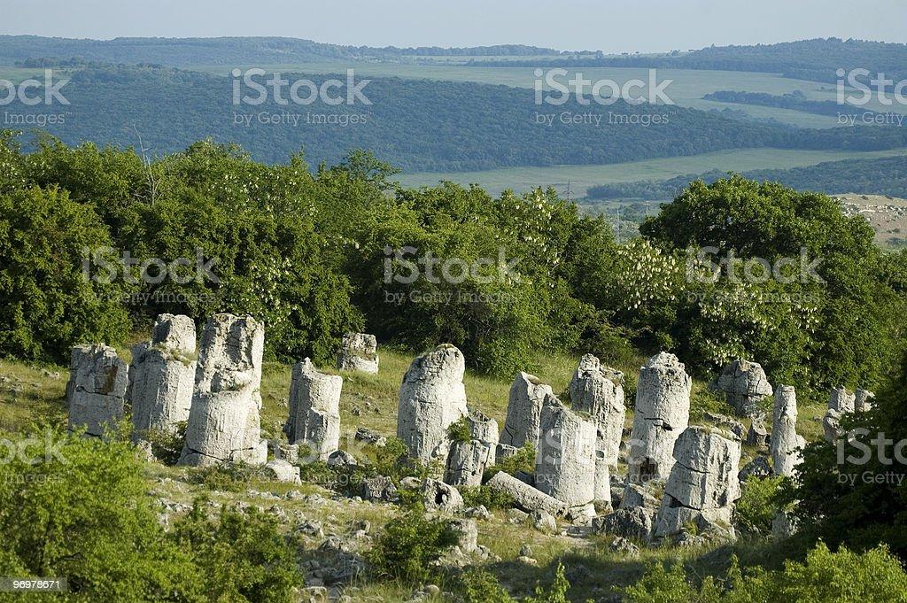 Rock phenomenon Pobiti Kamani (Stone Forest) royalty-free stock photo