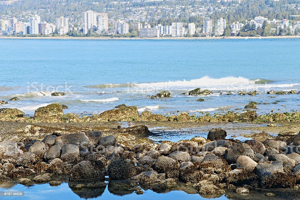 Rock Pool and Reflected Rocks, Stanley Park, Vancouver stock photo