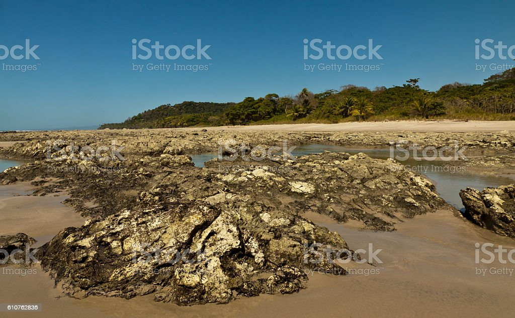 Rock pools at low tide stock photo