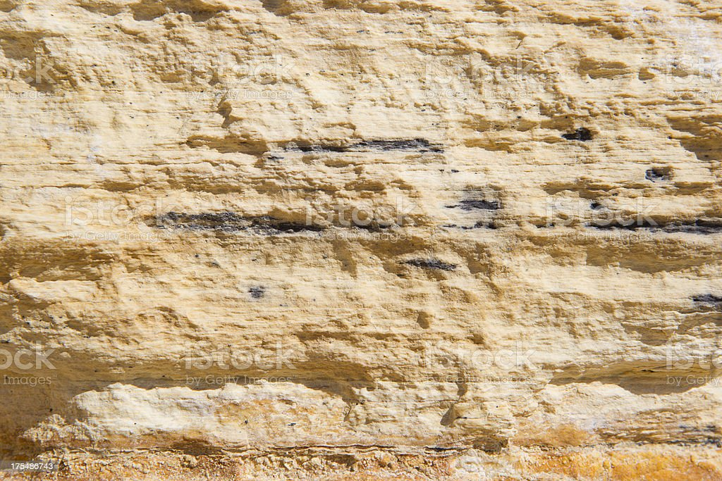 Rock Strata Showing Fossils at Fossil Butte National Monument stock photo
