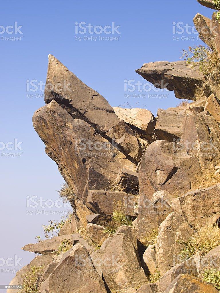 Rock turtle royalty-free stock photo