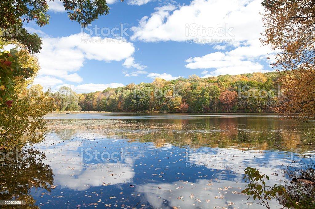 Rockefeller State Park Preserve at Autumn stock photo