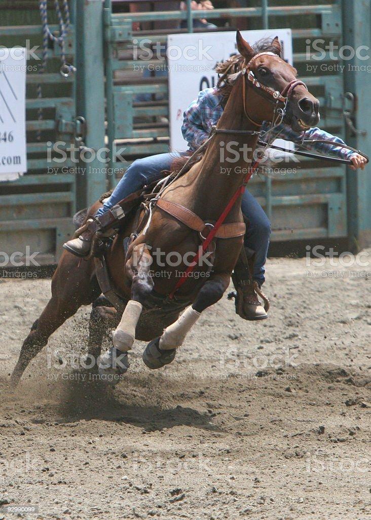 Rocket Horse stock photo