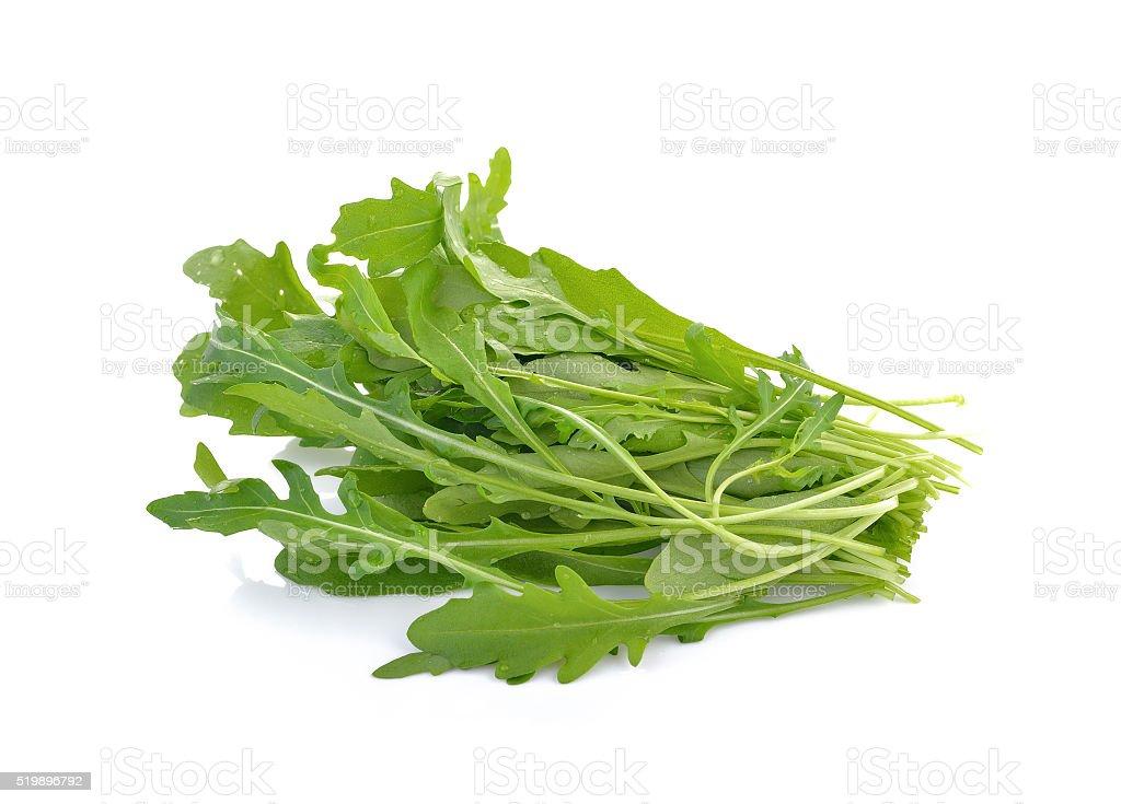 rocket lettuce leaves or sweet rucola salad stock photo