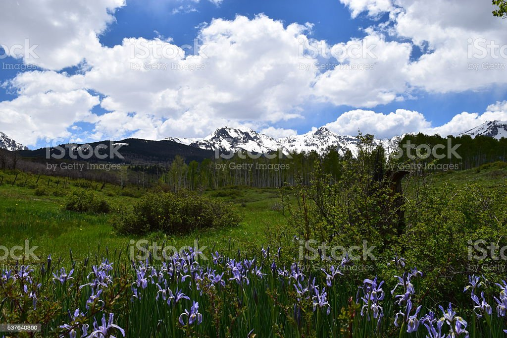 Rockie Mountain Spring stock photo