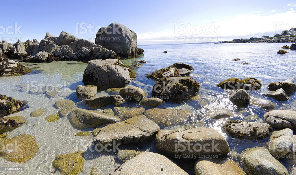 Rocks along shore in Monterey Bay at Pacific Grove, CA royalty-free stock photo