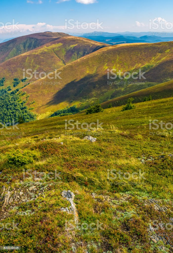 rocks among the grass on mountain slope stock photo