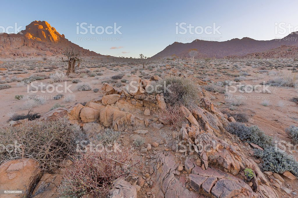 Rocks and dry bushes in Richtersveld stock photo