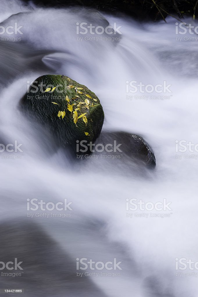 Rocks and Leaves in SIlky Creek royalty-free stock photo