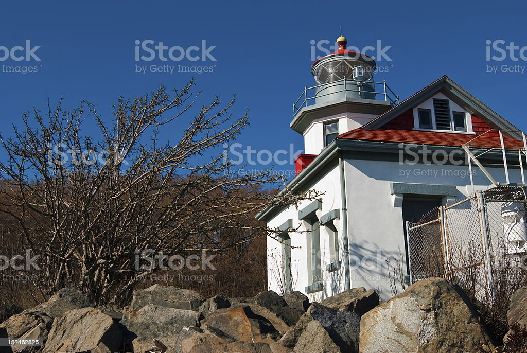 Rocks and tree in front of Point Robinson lighthouse royalty-free stock photo