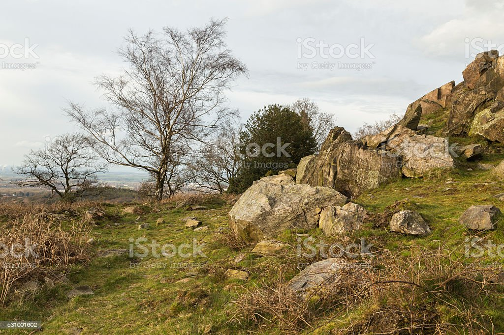 Rocks And Trees stock photo