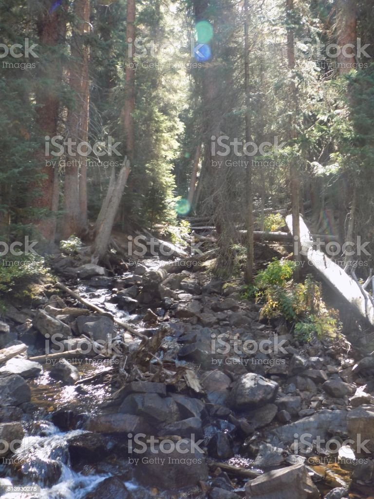 Rocks and waterfalls and trees and more stock photo