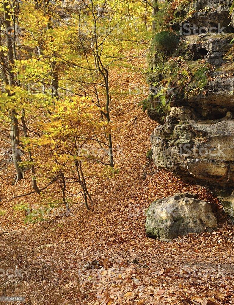 Rocks in Czech Switzerland stock photo