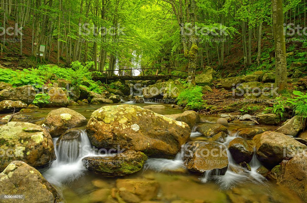 Rocks in the stream royalty-free stock photo