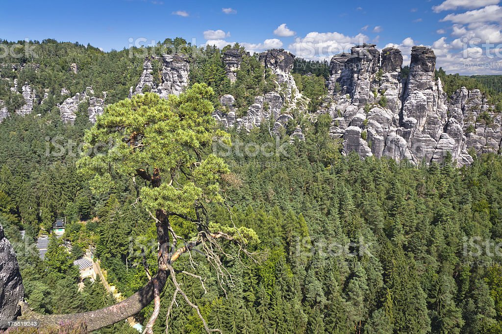Rocks of Bastei in Saxony stock photo
