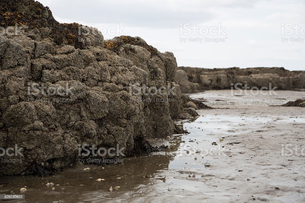 Rocks on the beach at low tide stock photo