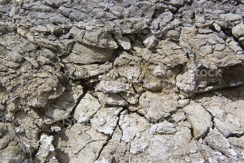 rocks surface royalty-free stock photo