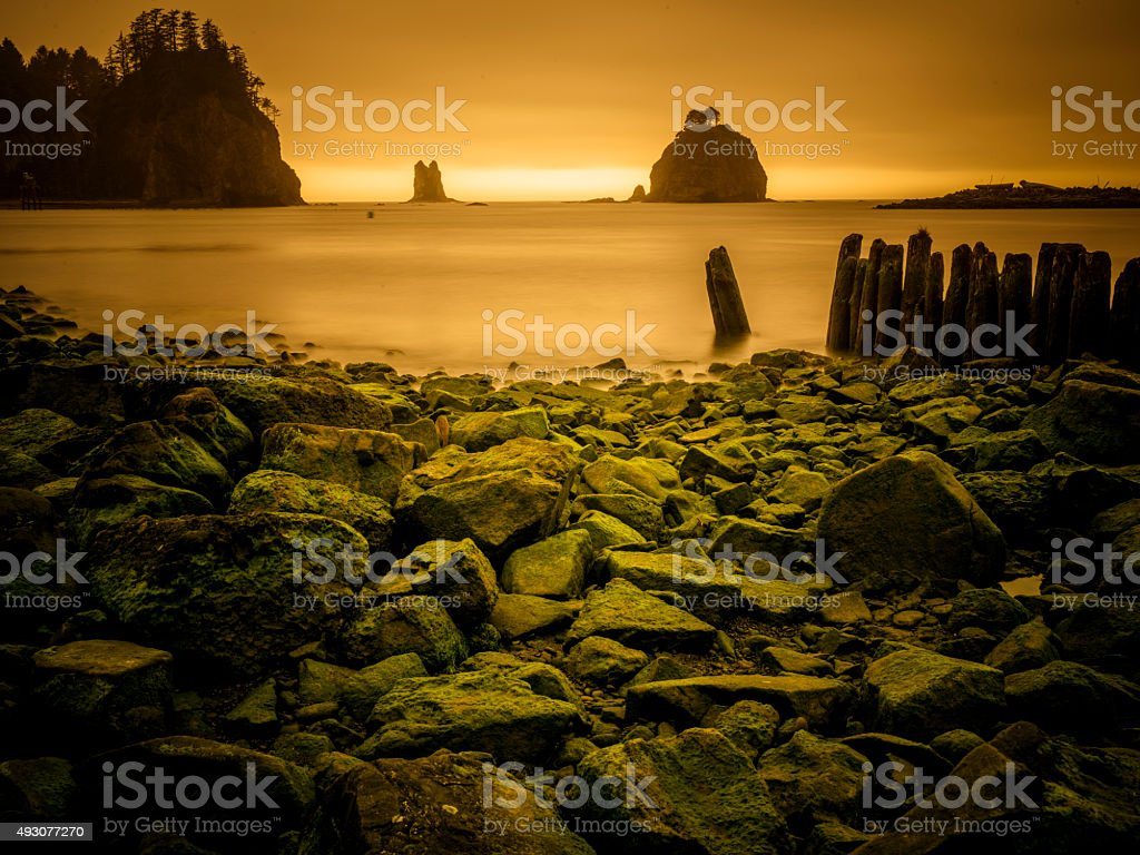 rocky beach in sunset, La Push beach, usa stock photo