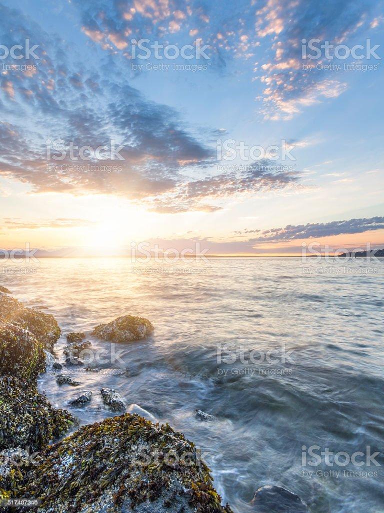 rocky beach in sunset, puget sound, alki beach, Seattle, usa stock photo