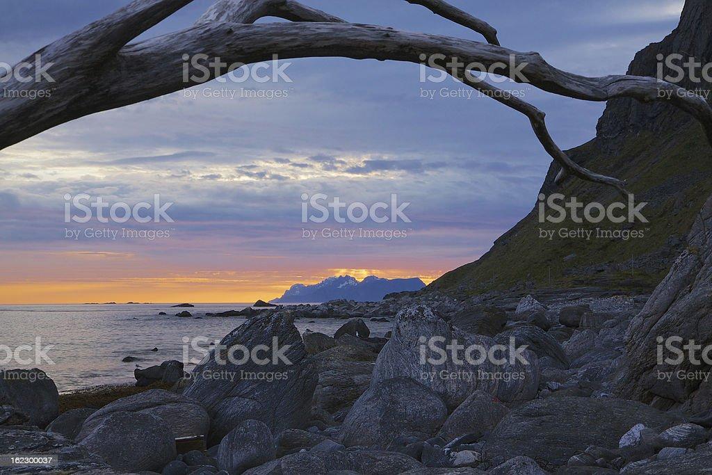 Rocky beach on Lofoten royalty-free stock photo