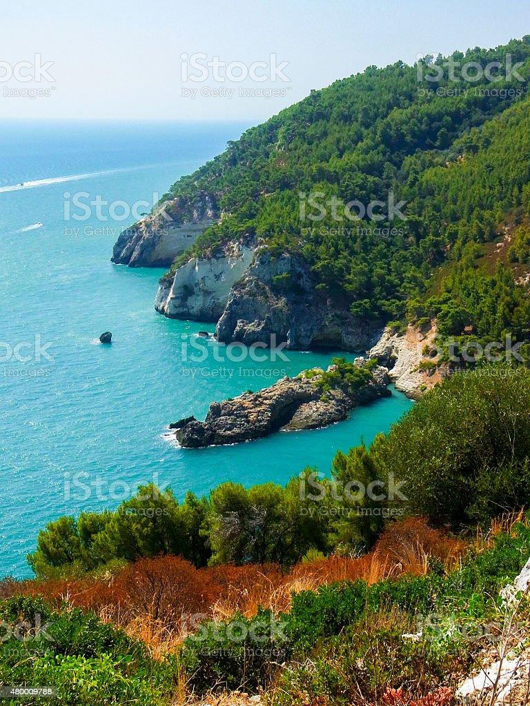 Rocky cliffs in the Gargano's coastline stock photo