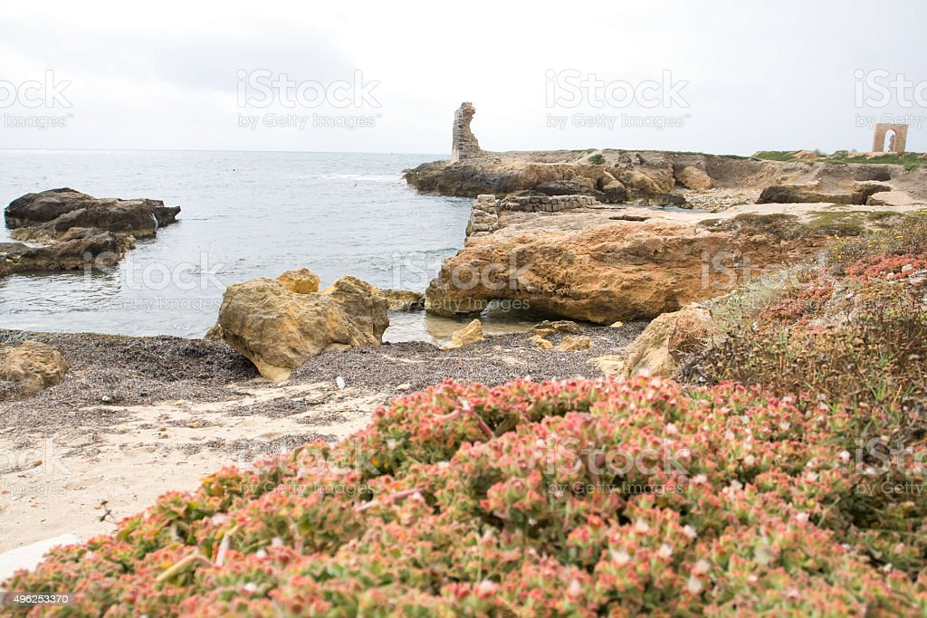 Rocky coast and sea near the town of Mahdia, Africa. stock photo