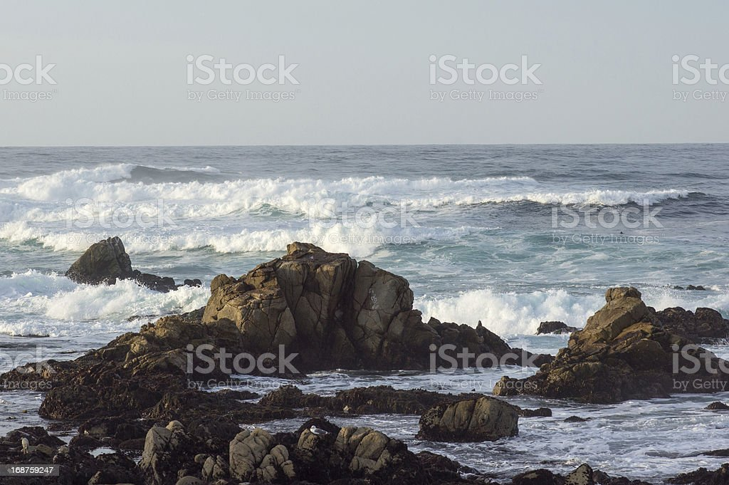HDR Rocky Coastline Along the 17 Mile Drive royalty-free stock photo