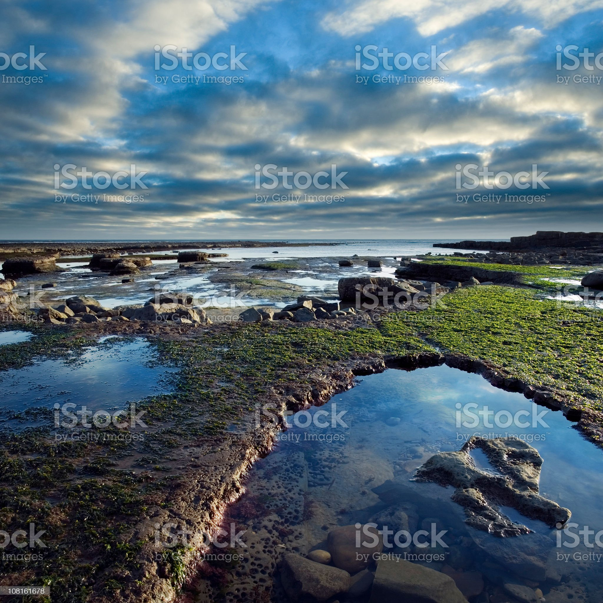 Rocky Coastline Exposed by Low Tide in England royalty-free stock photo