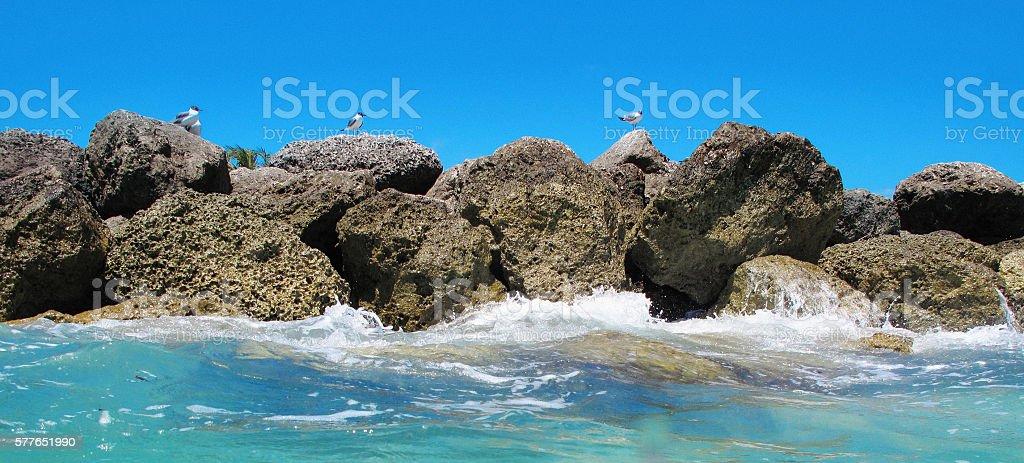 Rocky coastline in the Bahamas stock photo