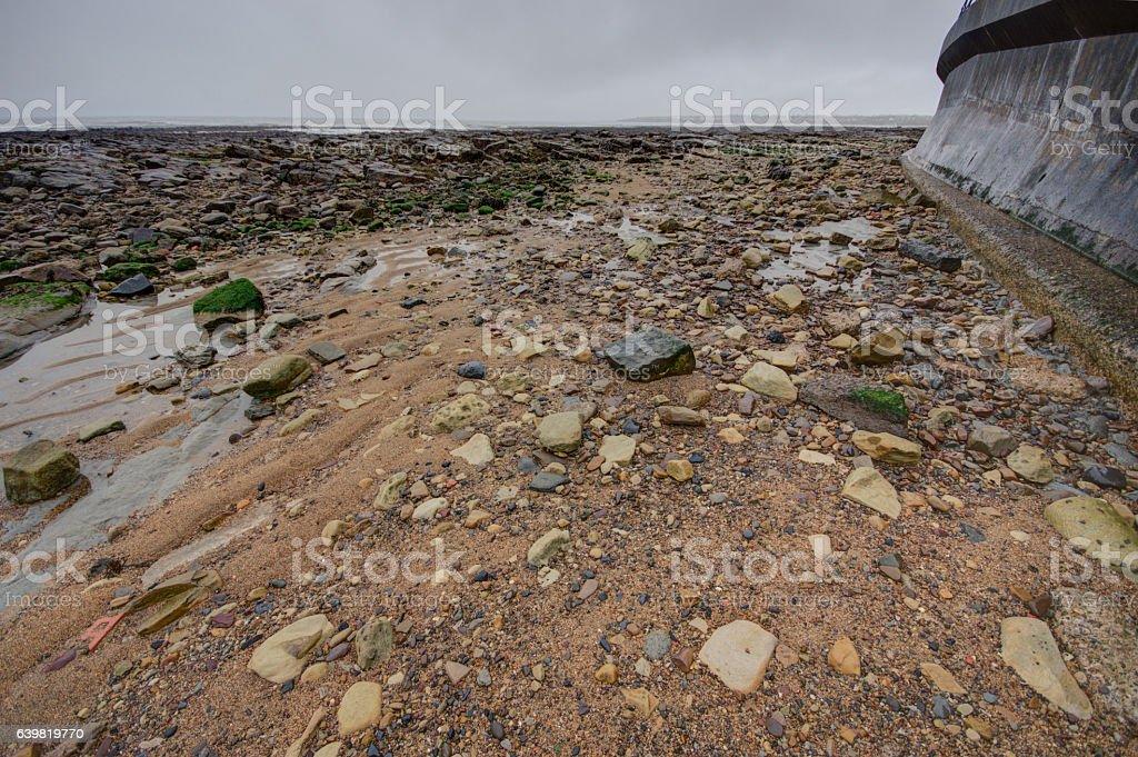 Rocky foreshore near St Mary's lighthouse stock photo