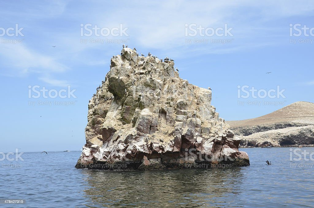 Rocky island of birds stock photo