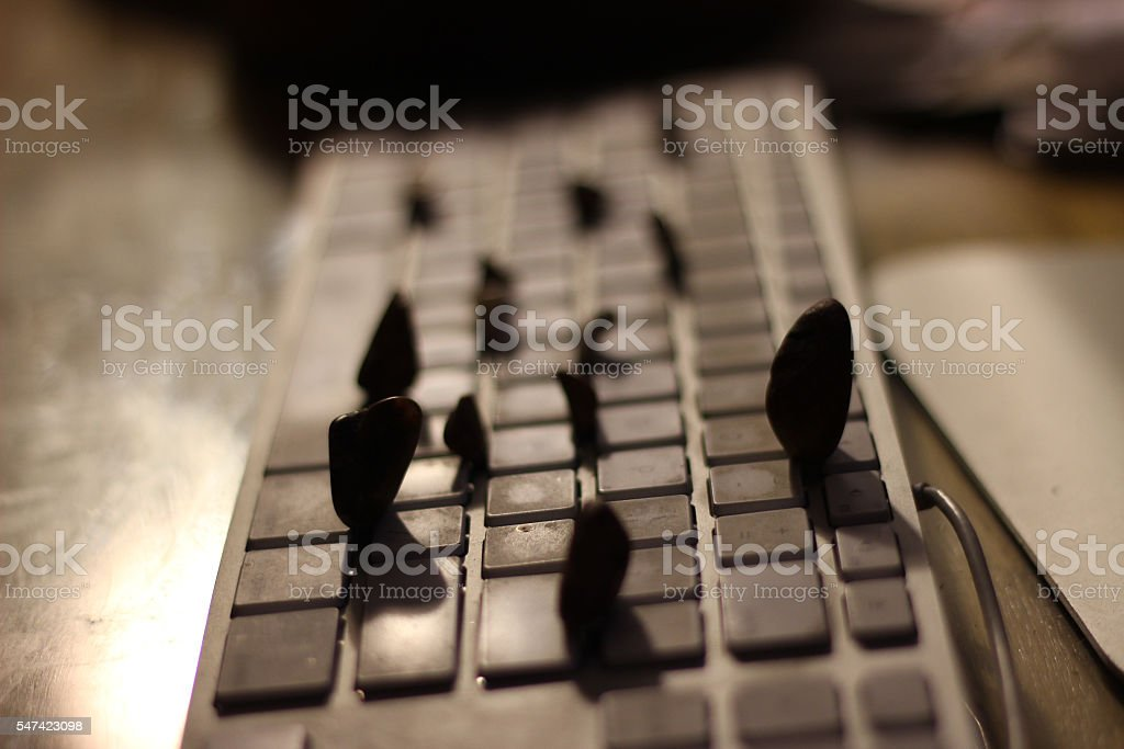 Rocky Keyboard stock photo