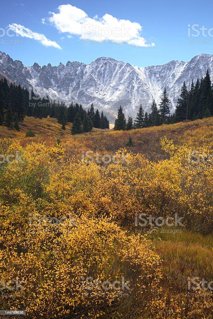 Rocky Mountain Autumn stock photo