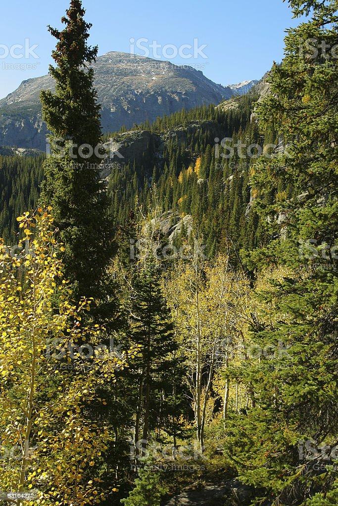 Rocky Mountain autumn royalty-free stock photo