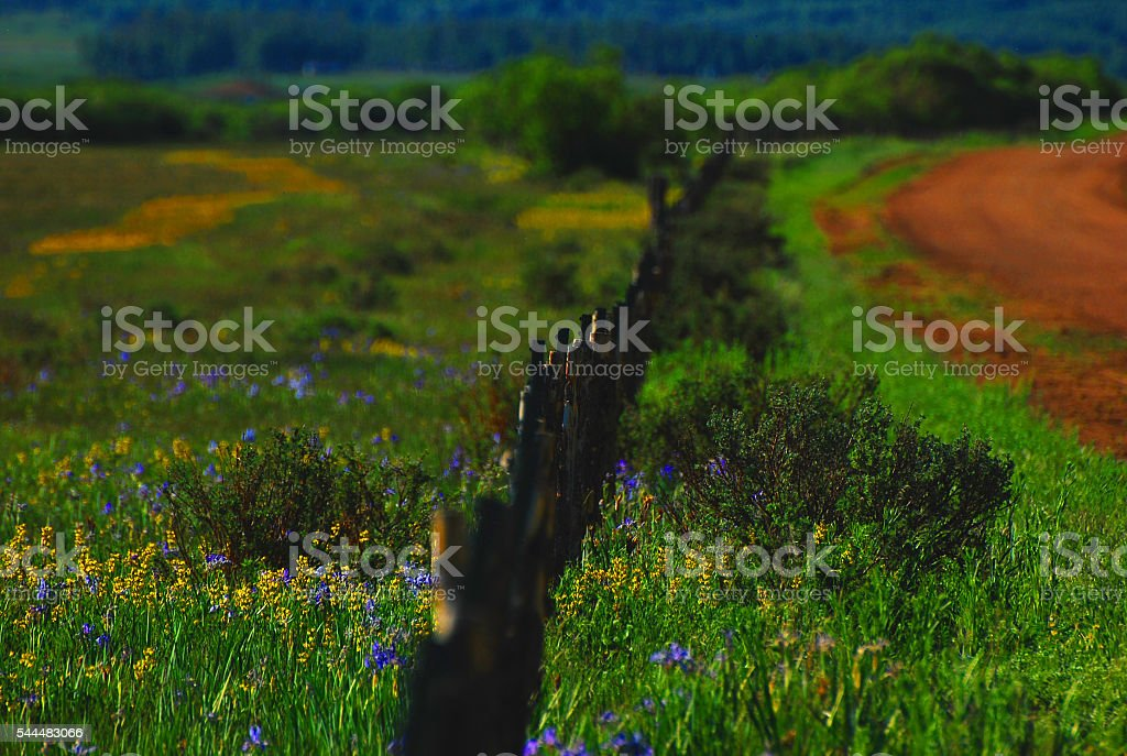 Rocky Mountain Backroads stock photo